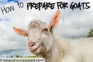 How To Prepare For Goats