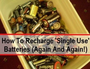 How To Recharge Single-Use Alkaline Batteries