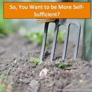 So, You Want To Be More Self Sufficient?