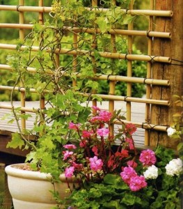 How To Make A Bamboo Trellis