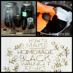 How To Make Black Walnut Ink