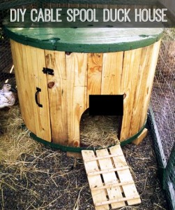 cable-spool-duck-house