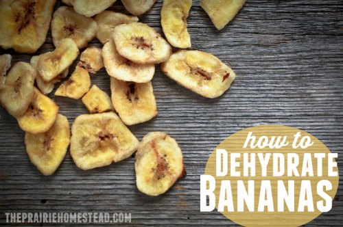 dehydrate-bananas