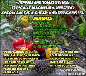 epsom-salt-uses