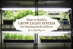 How To Build A Grow Light System