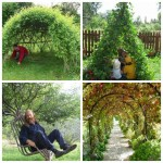 10 Amazing Living Structures That You Can Create