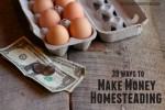 39 Ways To Make Money Homesteading