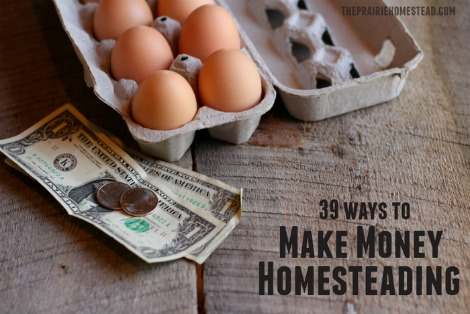 make-money-homesteading