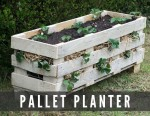 How To Make Pallet Strawberry Planters