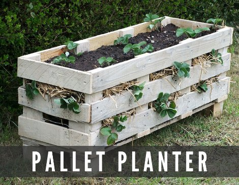 pallet-strawberry-planters