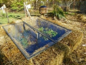 How To Build A Straw Bale Cold Frame And Extend Your Growing Season