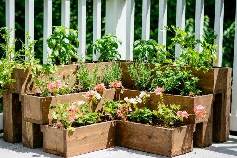 tiered-herb-garden