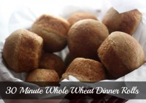 whole-wheat-dinner-rolls
