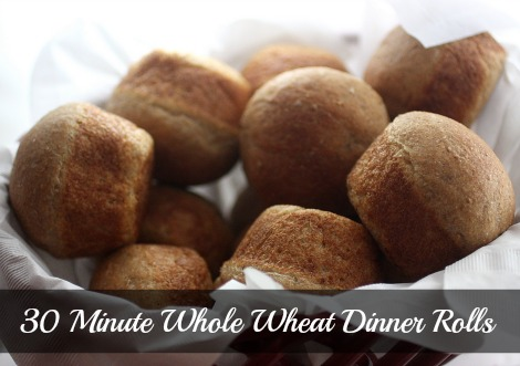 whole-wheat-dinner-rolls