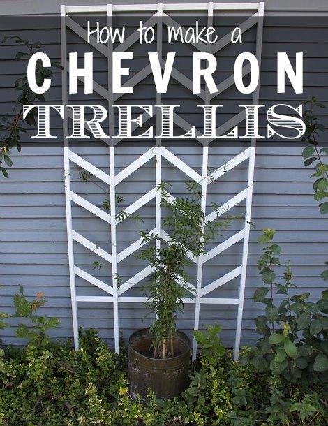 chevron-trellis