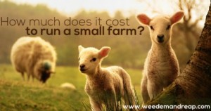cost-to-raise-a-small-farm