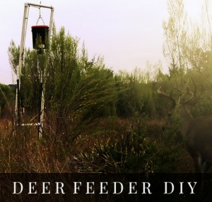 Deer Feeder DIY