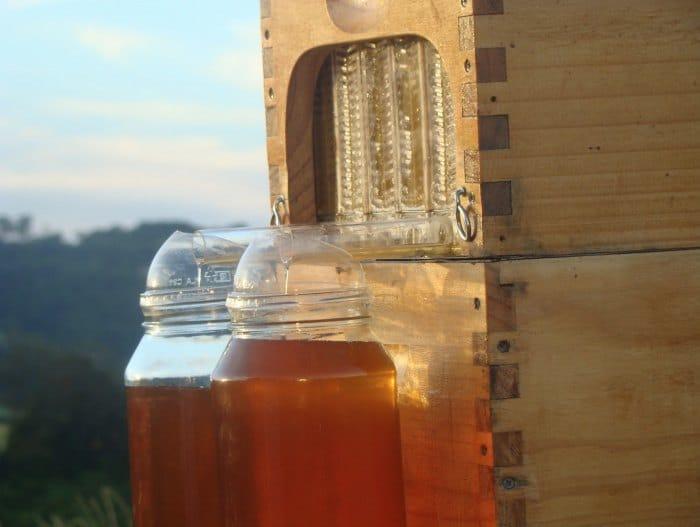 flow-hive-honey-on-tap-3