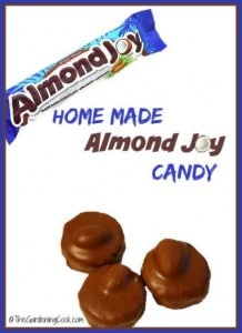 Homemade Almond Joy Recipe