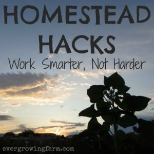 Homestead Hacks To Work Smarter, Not Harder