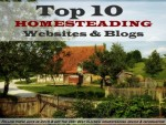 Top 10 Homesteading Blogs And Websites