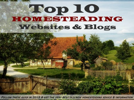 homesteading-blogs