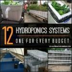 12 Hydroponics System Designs