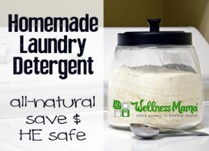 Homemade HE Powdered Laundry Detergent Recipe