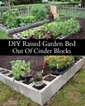 Make A Raised Garden Bed Out Of Cinder Blocks