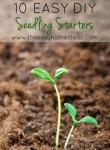 10 Easy DIY Seedling Starters