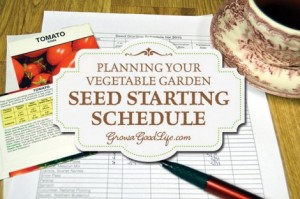 Planning Your Vegetable Garden & Seed Starting Schedule