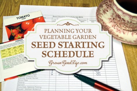 vegetable-garden-seed-starting-schedule