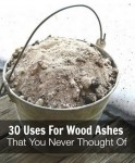 30 Uses For Wood Ashes That You Never Thought Of