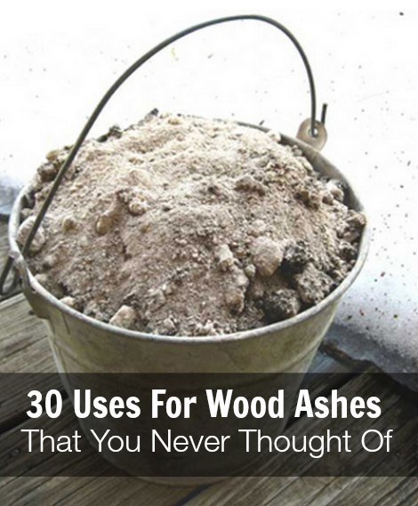 wood-ashes