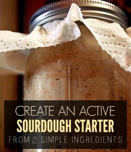 How To Create An Active Sourdough Starter From Two Simple Ingredients