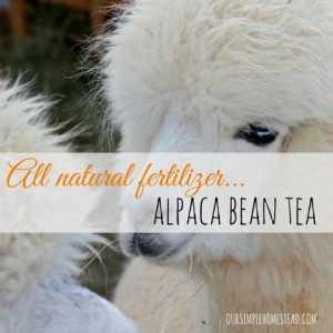 All Natural Fertilizer Alpaca Bean Tea