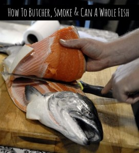 How To Butcher, Smoke And Can A Whole Fish