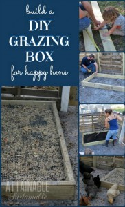 DIY Grazing Boxes