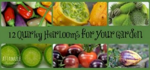 A Dozen Heirloom Vegetables To Dazzle Your Garden