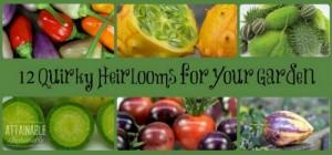 heirloom-vegetables