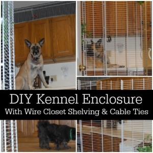 kennel-enclosure