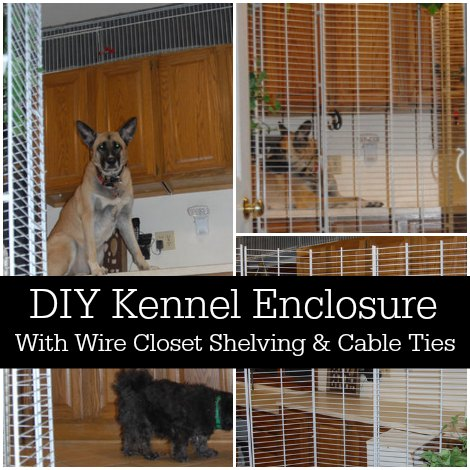 kennel-enclosure