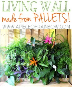 Tropical Pallet Living Wall
