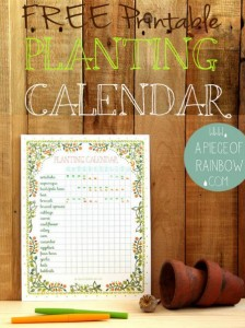 Free Printable Planting Calendar