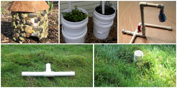 27 Brilliant Pvc Pipe Projects For Your Yard Garden