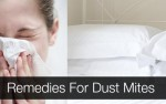 12 Natural Remedies For Dust Mites