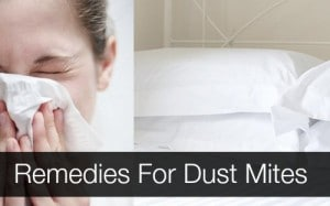 remedies-for-dust-mites