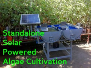 Stand Alone Solar Powered Algae Cultivation