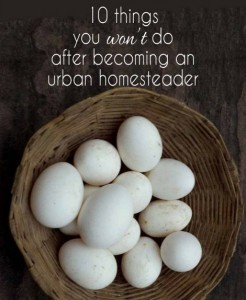 10 Things You Won't Do After Becoming An Urban Homesteader