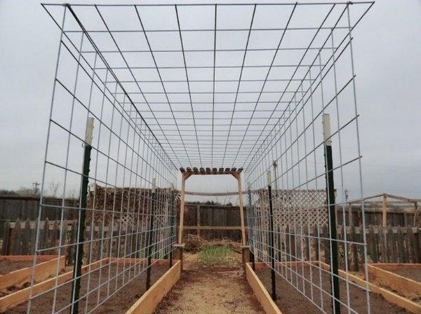 cattle-pen-panels-12